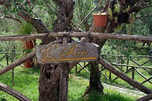 Holiday accommodation italy, special places to stay italy, agriturismo, albergo diffuso, alberghi diffusi, italian eco hotels, masseria italy