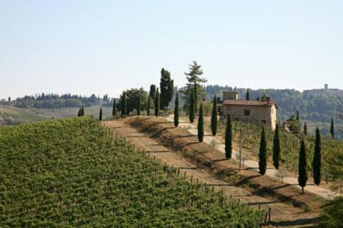 Tuscan wines, wines of tuscany, tuscany wines, tuscany vineyards, regional wines of tuscany